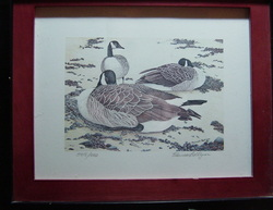 Duck - Goose Print by Murrell Bollinger, Limited Edition Print  505/1000 shows 3 Canadian Geese Signed LR  Measures 12 3/4 X 10 3/4, very nice wooden Frame $79.00 www.vintageprintsandart.com