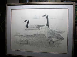 Outdoor Duck - Goose - Hunting  - Print by Steve Leonardi Canada Geese Limited Edition Print  263/1000 signed LR www.vintageprintsandart.com