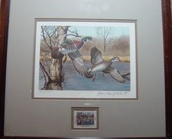 Duck Print by Richard Plasschaert, First Of State 1983 New Hampshire - Wood Ducks.  Artists Proof 1 Stamp - 1 Print  Limited Edition 260/400 - www.vintageprintsandart.com