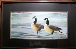 Canada Geese by Philippe Powell Limited Edition Print 518/1000 Large Print , Matted and Framed  20 1/2 X 32 1/2