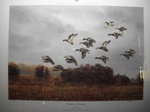 Outdoor Duck Hunting  Print by R.J Nelson - October Memories. Minnesota Ducks Unlimited Print of the Year 1993-1994 Limited Edition 256/2400  www.vintageprintsandart.com
